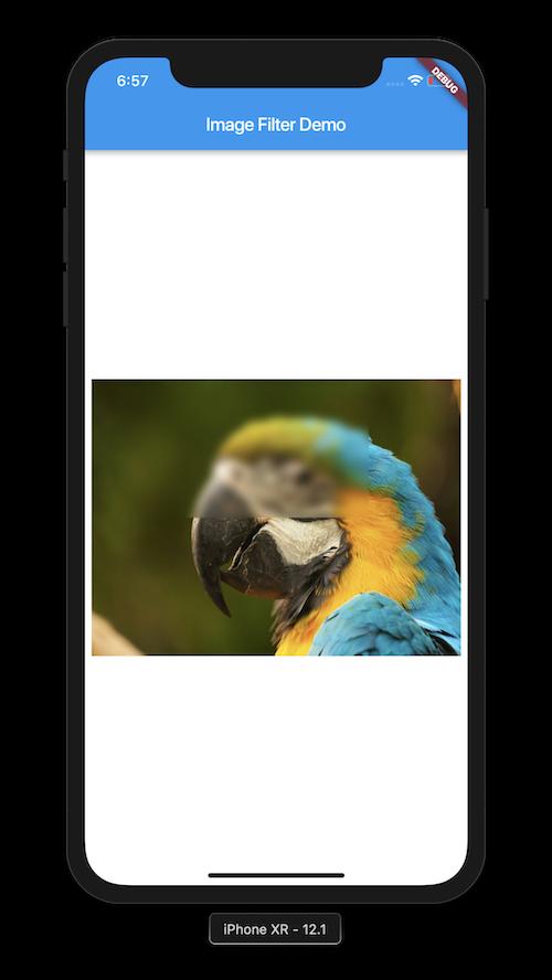 Flutter Image Filter