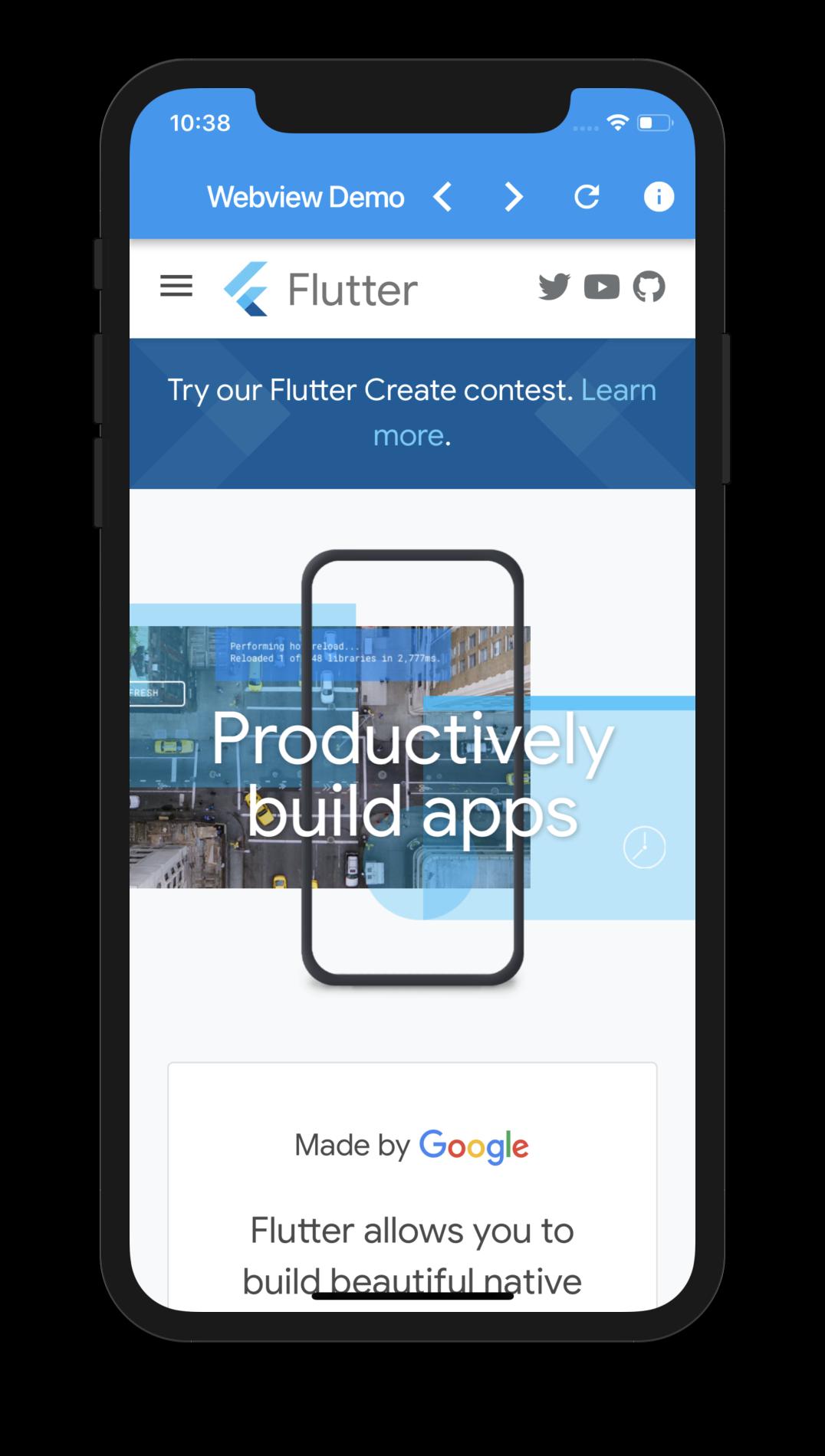 Webview Flutter