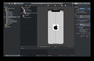 Custom Splash Screen iOS